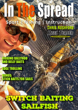 sailfish bait and switch in the spread reel teaser fishing adventures